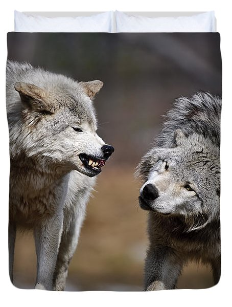 Duvet Cover featuring the photograph Alpha Displeasure by Wolves Only
