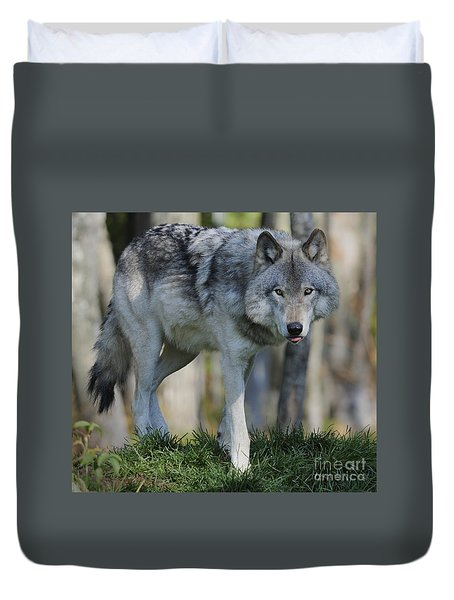 Alpha... Duvet Cover by Nina Stavlund