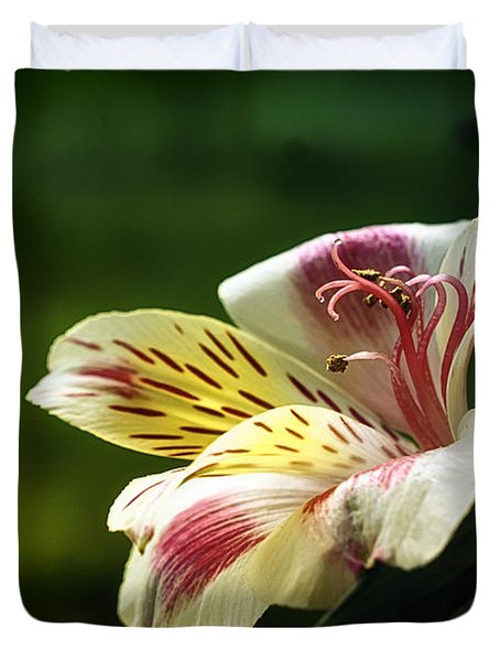 Alstroemeria One Duvet Cover