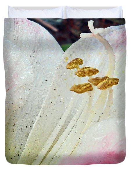 Amaryllis Belladonna Duvet Cover