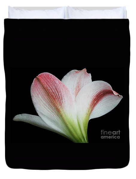 Amaryllis Duvet Cover by Judy Whitton
