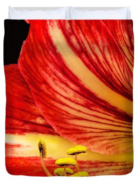 Amaryllis Pollen Duvet Cover