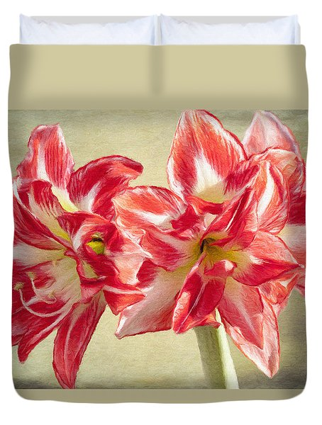 Amaryllis Red Duvet Cover by Jeff Kolker