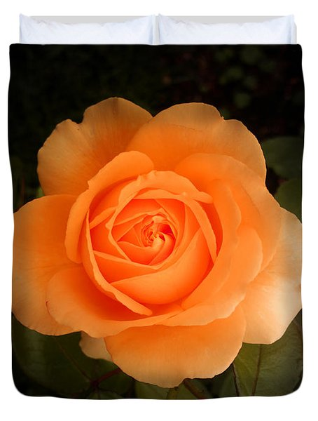 Amber Flush Rose Duvet Cover