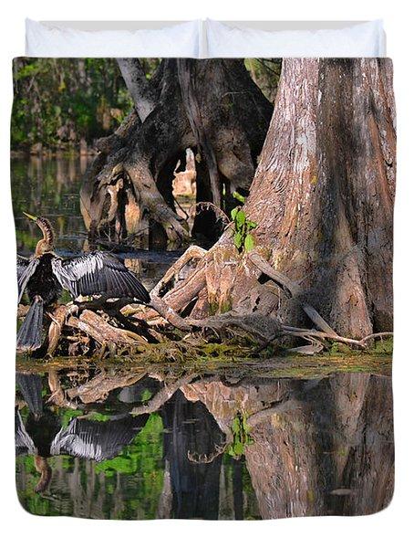 American Anhinga Or Snake-bird Duvet Cover by Christine Till