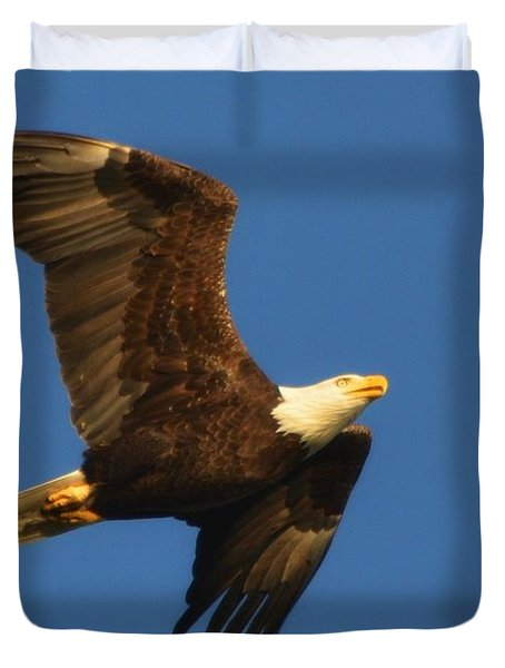 Duvet Cover featuring the photograph American Bald Eagle Close-ups Over Santa Rosa Sound With Blue Skies by Jeff at JSJ Photography