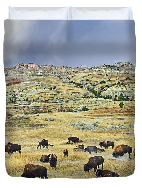 American  Bison Herd Grazing Duvet Cover by Tim Fitzharris