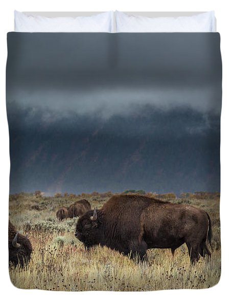 American Bison On The Prairie Duvet Cover