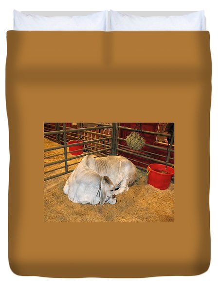 American Brahman Heifer Duvet Cover by Connie Fox