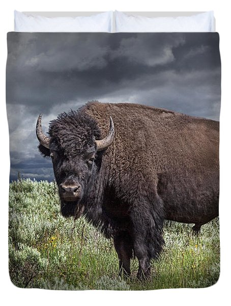 American Buffalo Or Bison In Yellowstone Duvet Cover