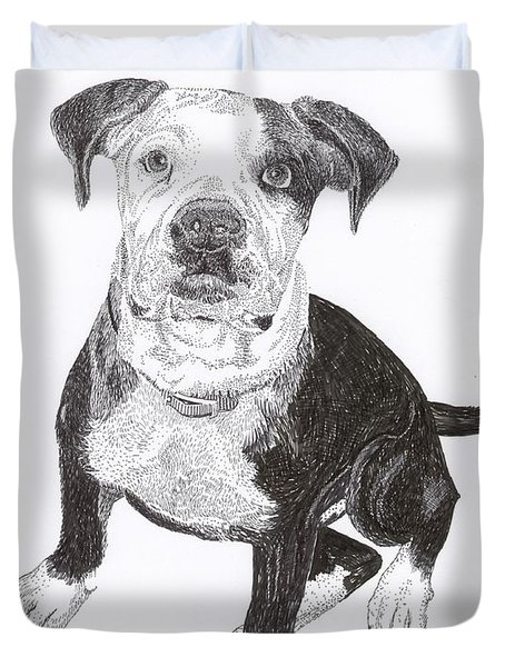 American Bull Dog As A Pup Duvet Cover by Jack Pumphrey