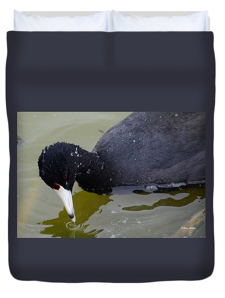 Duvet Cover featuring the photograph American Coot by Debra Martz
