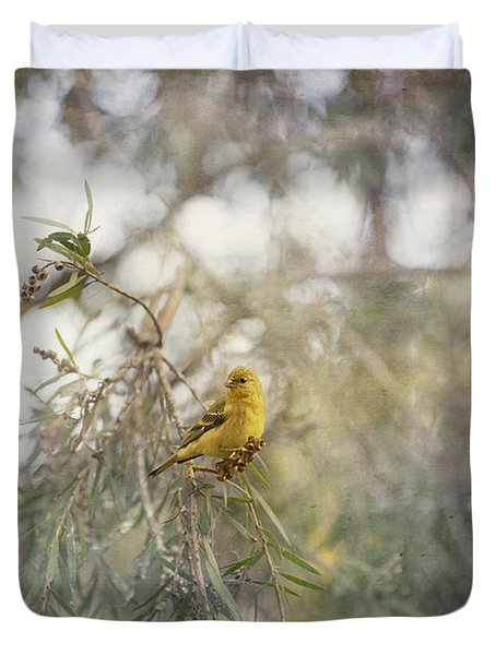 American Goldfinch In Winter Plumage Duvet Cover by Angela A Stanton