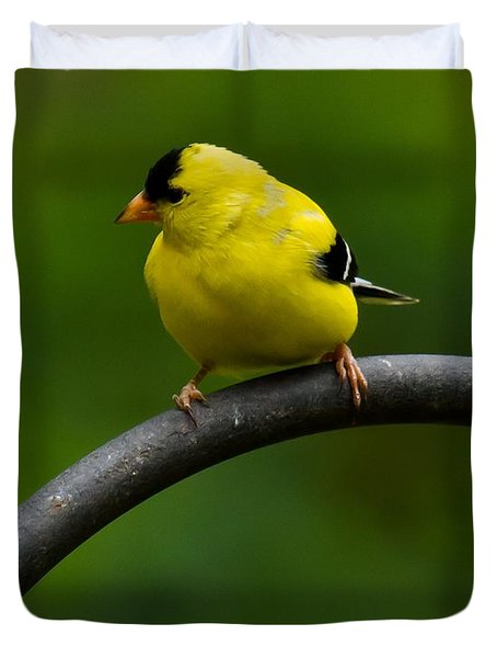 Duvet Cover featuring the photograph American Goldfinch by Robert L Jackson