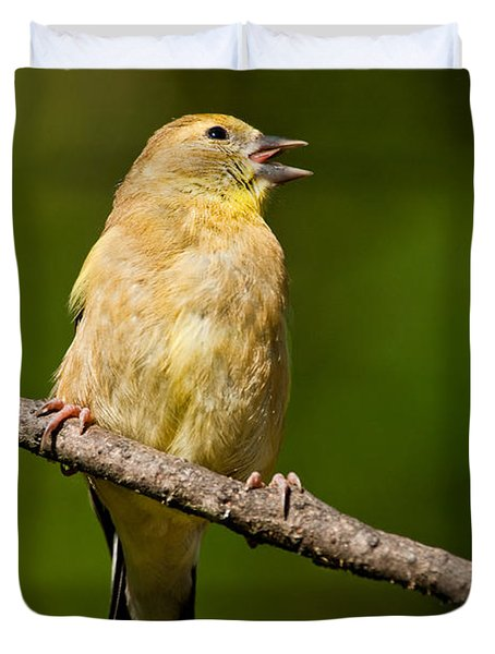 American Goldfinch Singing Duvet Cover