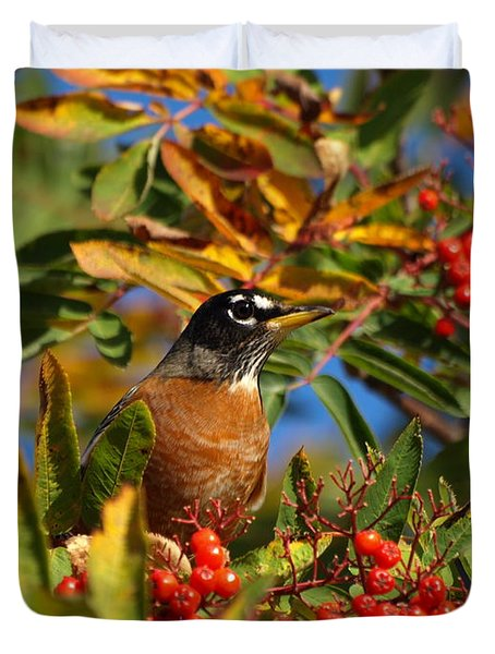 American Robin Duvet Cover by James Peterson