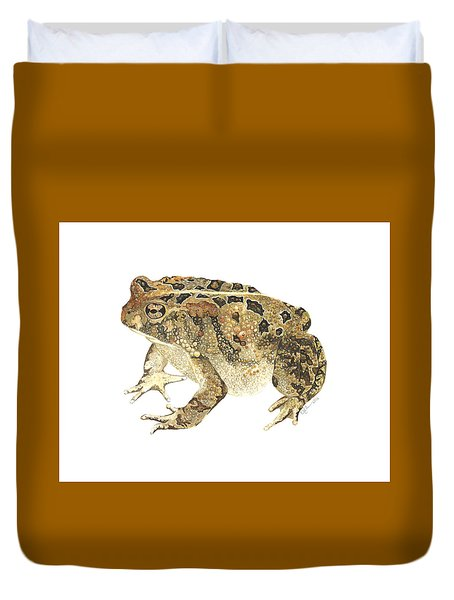 American Toad Duvet Cover by Cindy Hitchcock