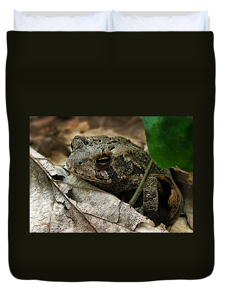 American Toad Duvet Cover by William Tanneberger