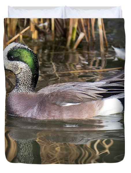 American Wigeon Reflections Duvet Cover