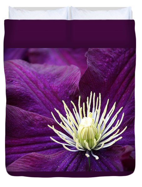 Amethyst Colored Clematis Duvet Cover by Kay Novy