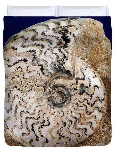 Ammonite Fossil Duvet Cover by Scott Camazine