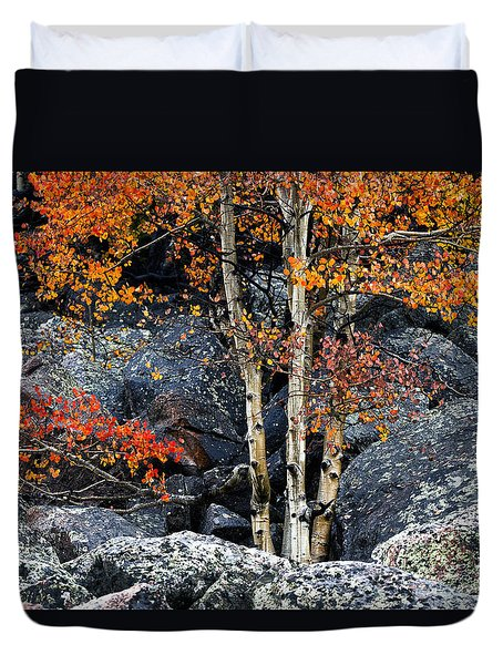 Among Boulders Duvet Cover