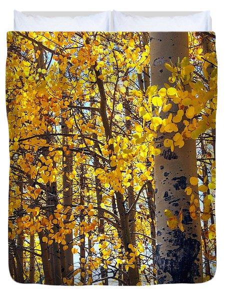 Among The Aspen Trees In Fall Duvet Cover