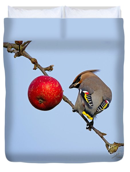 An Apple A Day... Duvet Cover by Torbjorn Swenelius
