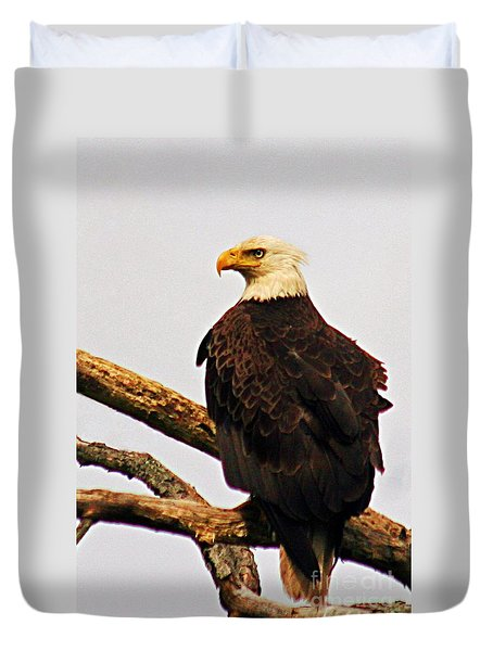 An Eagle's Perch Duvet Cover by Polly Peacock