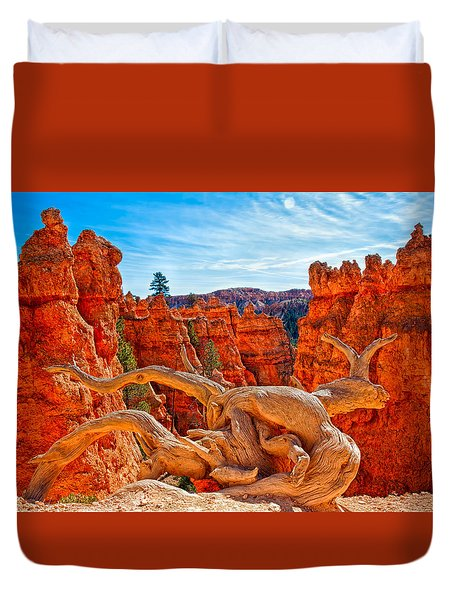 An Object For Imagination Duvet Cover
