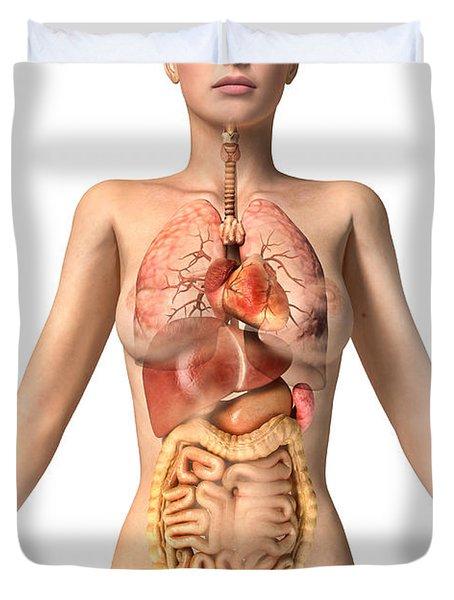 Anatomy Of Female Body With Internal Duvet Cover by Leonello Calvetti