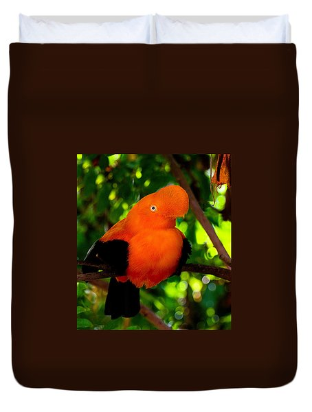 Andean Cock Of The Rock Duvet Cover