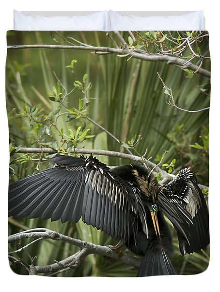 Anhinga Papa Duvet Cover by Phill Doherty
