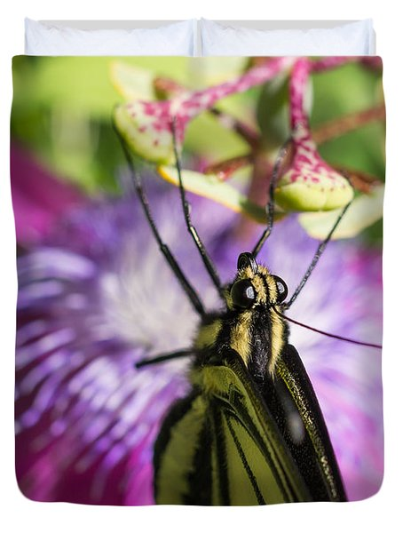 Anise Swallowtail Butterfly And Passionflower Duvet Cover by Priya Ghose