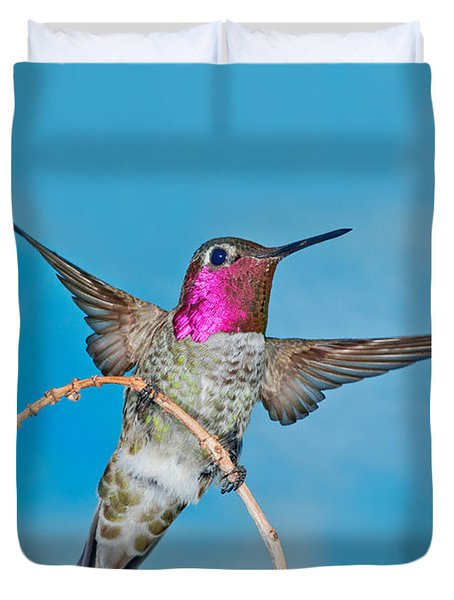 Annas Hummingbird Male Duvet Cover by Anthony Mercieca