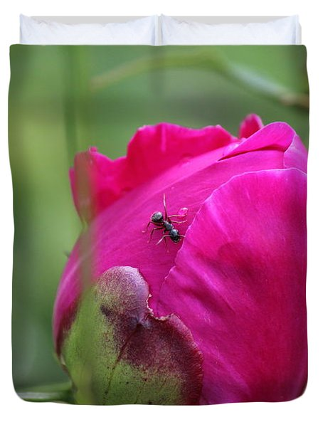 Ant On Peony Duvet Cover