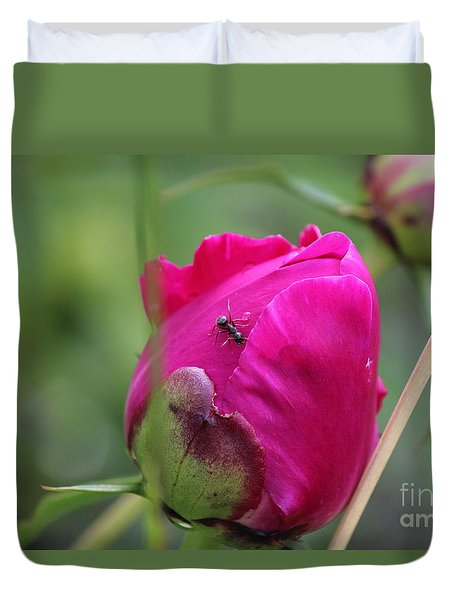 Duvet Cover featuring the photograph Ant On Peony by Ann E Robson