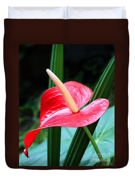 Anthurium Duvet Cover by Mariarosa Rockefeller