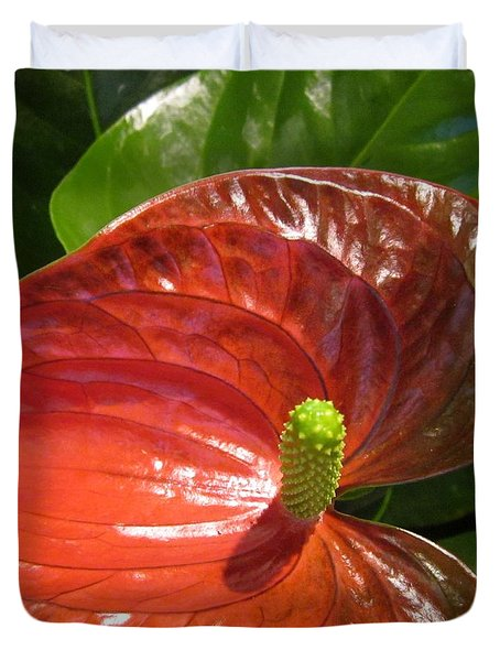 Anthurium Duvet Cover