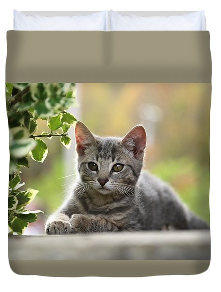 Anticipation  Duvet Cover by Dennis Baswell
