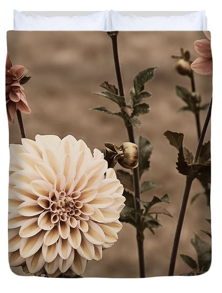 Duvet Cover featuring the photograph Antiqued Dahlias by Jeanette C Landstrom