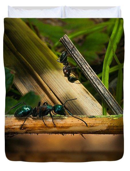 Ants Adventure 2 Duvet Cover by Bob Orsillo