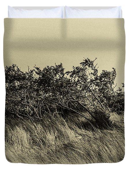 Apollo Beach Grass Duvet Cover