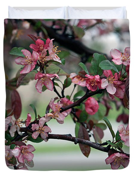 Duvet Cover featuring the photograph Apple Blossom Time by Kay Novy