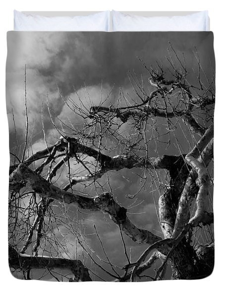 Apple Tree Bw Duvet Cover