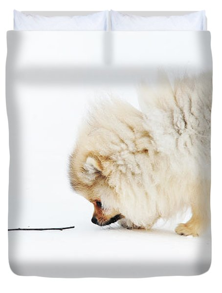 Apport Duvet Cover by Jenny Rainbow