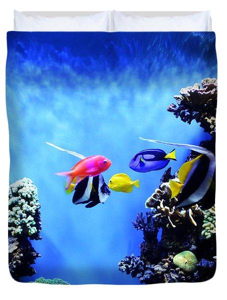 Aquarium 1 Duvet Cover by Barbara Snyder