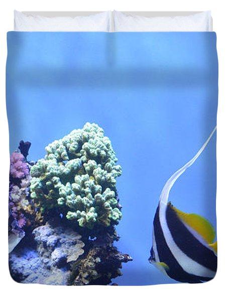 Aquarium 5 Duvet Cover by Barbara Snyder