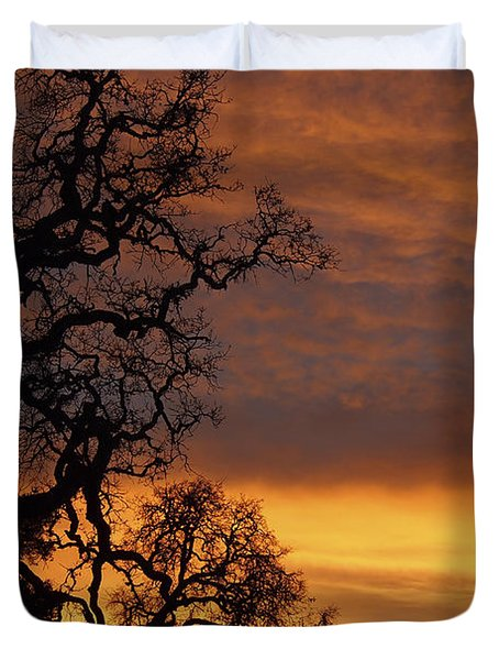 Arastradero Open Space Preserve Sunset Duvet Cover by Priya Ghose
