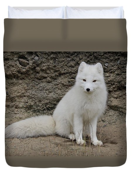 Arctic Fox Duvet Cover by Athena Mckinzie
